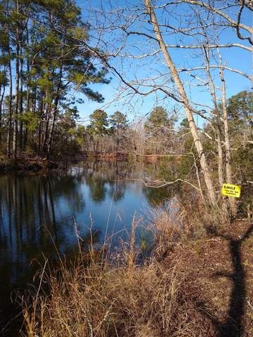 3121 S Hwy 17A, Summerville, SC 29483 (#21007665) :: Realty ONE Group Coastal
