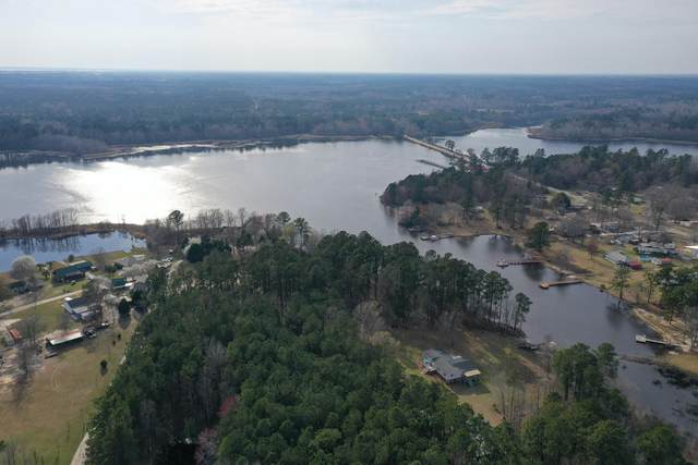 1350 Cottage Drive, Summerton, SC 29148 (#21008182) :: Realty ONE Group Coastal