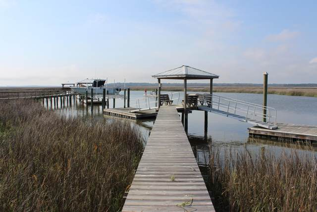 2 Old Oyster Lane, Edisto Island, SC 29438 (#21008185) :: Realty ONE Group Coastal