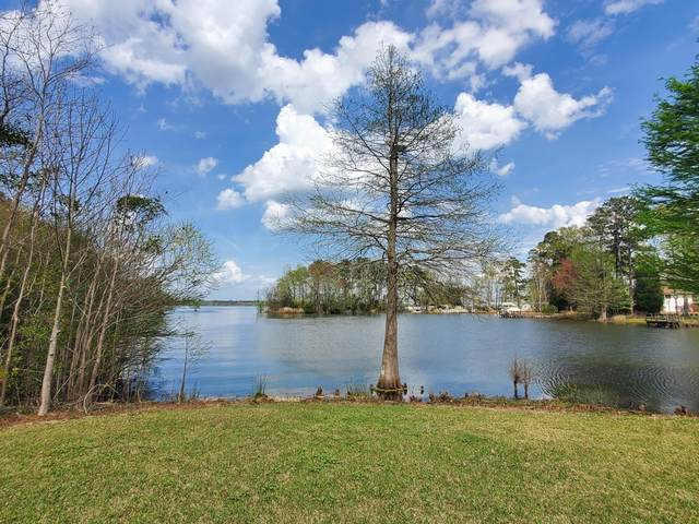 124 Calm Waters Drive, Eutawville, SC 29048 (#21008190) :: The Cassina Group