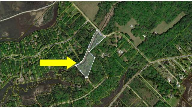 915 Whooping Island Creek Drive, Edisto Island, SC 29438 (#21008225) :: Flanagan Home Team