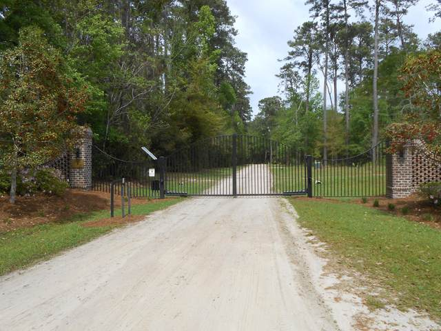 Lot 24 Chaplin Garden Lane, Edisto Island, SC 29438 (#21009972) :: The Cassina Group