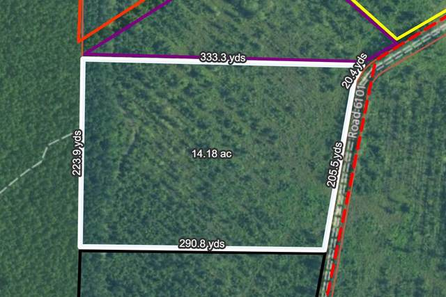 0 Walleye Road, Bonneau, SC 29431 (#21010427) :: The Cassina Group