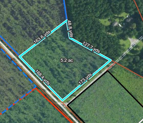 0 Walleye Road, Bonneau, SC 29431 (#21010428) :: The Cassina Group