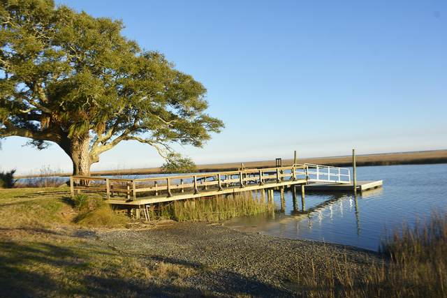 1199 Framptons Inlet Road, Edisto Island, SC 29438 (#21011230) :: The Cassina Group