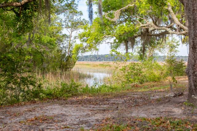 2250 Fiddler Creek Drive, Charleston, SC 29412 (#21011442) :: Realty ONE Group Coastal