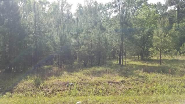 262 Fox Field Road, Walterboro, SC 29488 (#21011507) :: Flanagan Home Team
