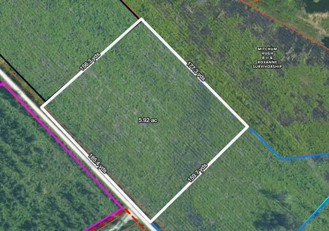 0 Walleye Road Walleye Tract E, Bonneau, SC 29431 (#21011612) :: Realty ONE Group Coastal