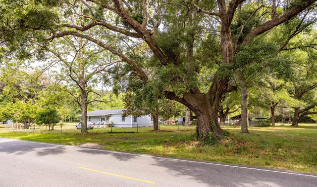 4250 River Road, Johns Island, SC 29455 (#21011889) :: The Cassina Group