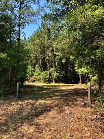0 Rehoboth Road, Cottageville, SC 29435 (#21014209) :: The Cassina Group