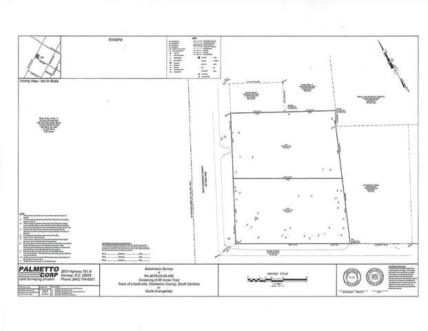 186 W Boundary Street, Summerville, SC 29485 (#21020018) :: Flanagan Home Team
