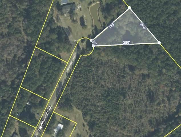 270 Sweetheart Lane, Walterboro, SC 29488 (#21021038) :: Realty ONE Group Coastal