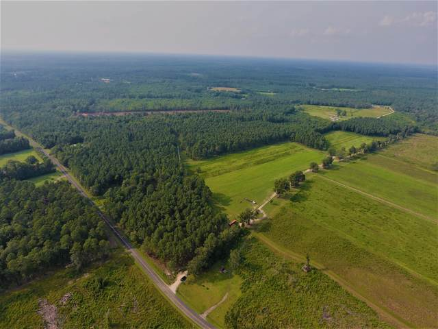 0 Ruffin Road, Ruffin, SC 29475 (#21021326) :: Realty ONE Group Coastal