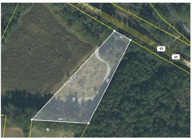 1675 Highway 61, Ridgeville, SC 29472 (#21021456) :: Flanagan Home Team