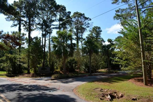 34 Deer Tract Drive, Edisto Island, SC 29438 (#21023113) :: Flanagan Home Team