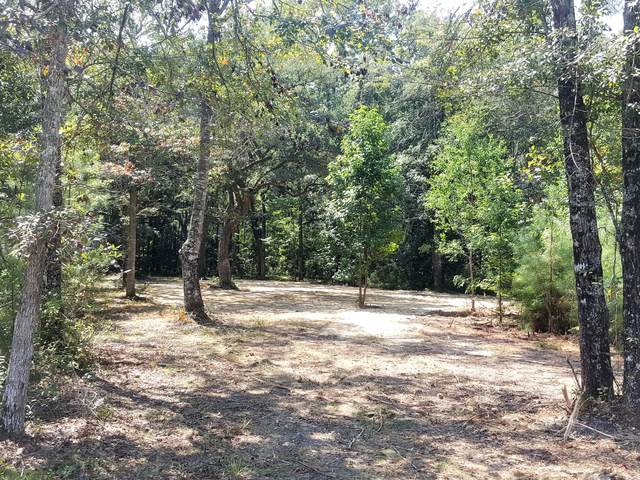 5861 Coffeetree Lane, Ravenel, SC 29470 (#21025100) :: Hergenrother Realty Group
