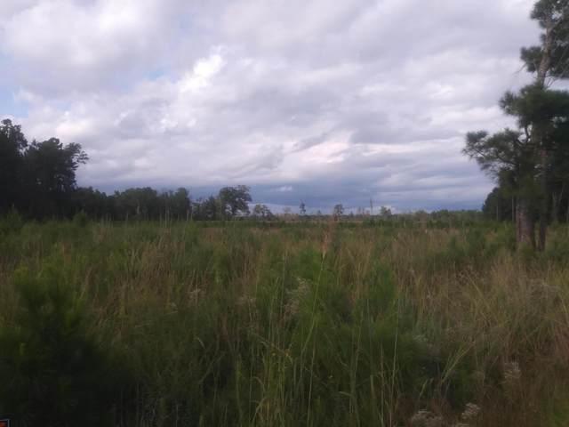 0 Cedar Swamp Road, Kingstree, SC 29556 (#21025663) :: Hergenrother Realty Group