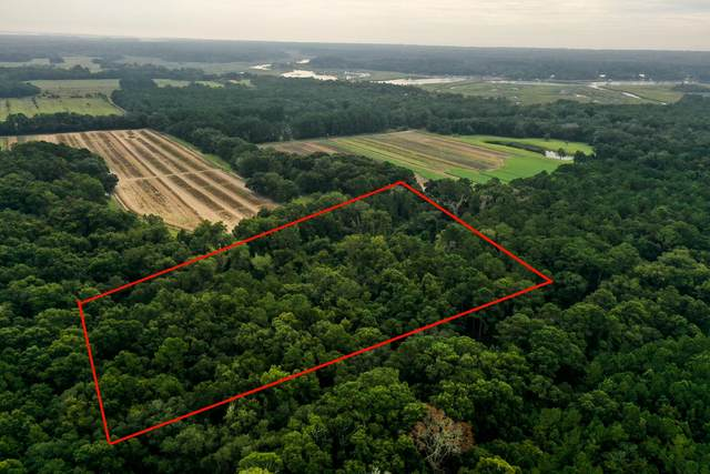 0 Brownleaf Drive, Edisto Island, SC 29438 (#21025713) :: Hergenrother Realty Group