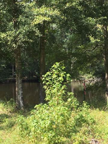 0 Black Water Trail, Round O, SC 29474 (#21025789) :: Hergenrother Realty Group