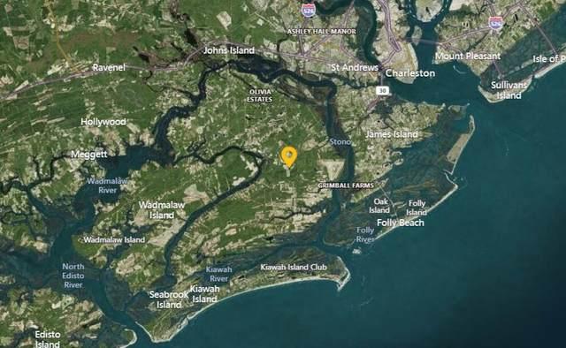 3242 Cape Road, Johns Island, SC 29455 (#21027115) :: The Cassina Group