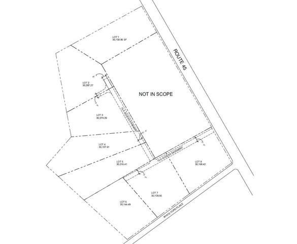 1135 Santee River Road, Saint Stephen, SC 29479 (#21027716) :: Flanagan Home Team