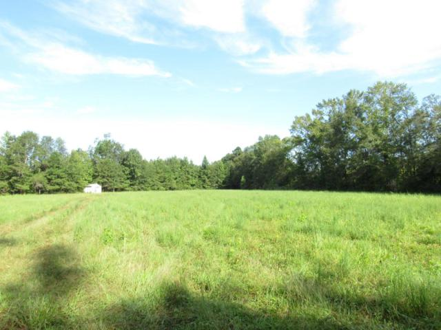 Lot 7 Lebanon Farm Road, Ridgeville, SC 29472 (#17019818) :: Realty ONE Group Coastal