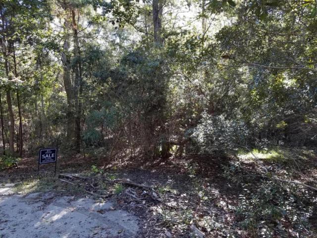 9 Preserve Road, Johns Island, SC 29455 (#17028953) :: Realty ONE Group Coastal