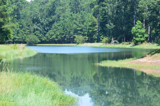 4104 Duck Club Road, Hollywood, SC 29470 (#18020462) :: The Cassina Group