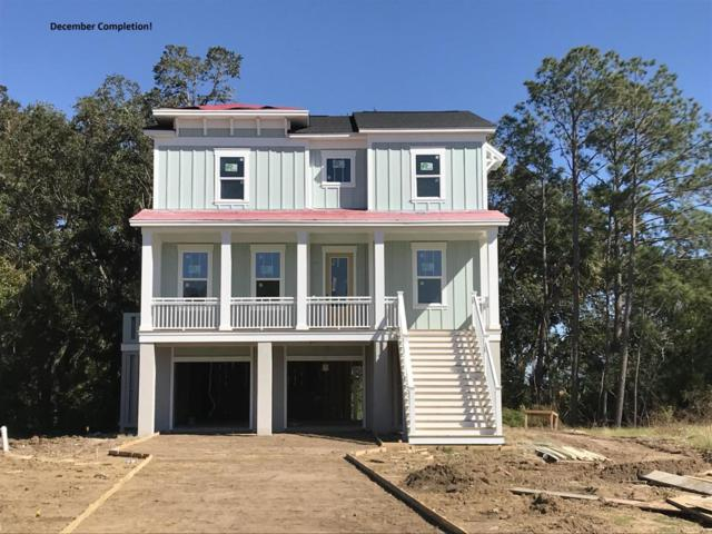 3628 Tidal Flat Circle, Mount Pleasant, SC 29466 (#18025835) :: The Cassina Group