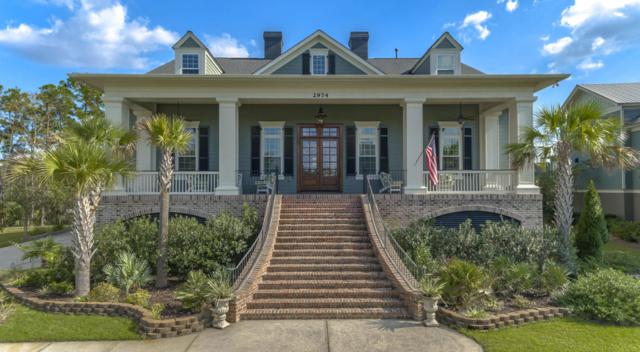 2974 River Vista Way, Mount Pleasant, SC 29466 (#18027644) :: The Cassina Group