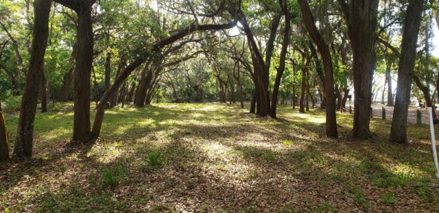 2974 Maritime Forest Drive, Johns Island, SC 29455 (#19011632) :: The Cassina Group