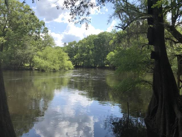 0 Augusta Highway, Cottageville, SC 29435 (#19016423) :: Realty ONE Group Coastal