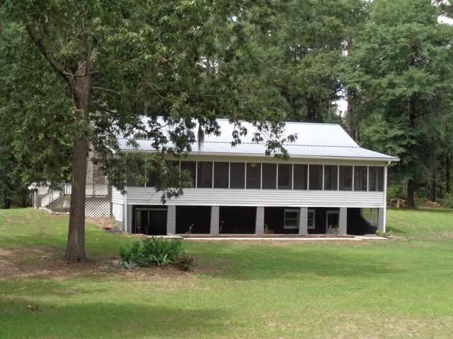 1361 Lake Drive, Summerton, SC 29148 (#19020082) :: The Cassina Group