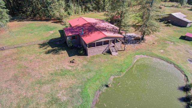 2285 S Highway 15, Saint George, SC 29477 (#19029396) :: The Cassina Group