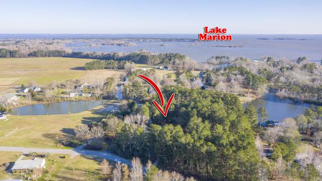 141 Meredith Drive, Eutawville, SC 29048 (#20001412) :: The Cassina Group