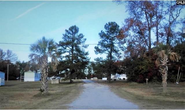 109 Fruit Port Lane, Orangeburg, SC 29115 (#20003602) :: Realty ONE Group Coastal
