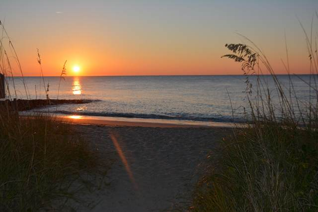 904 Palmetto Boulevard, Edisto Beach, SC 29438 (#20004828) :: The Cassina Group