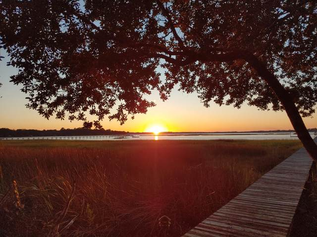 5753 Boone Haven Road, Wadmalaw Island, SC 29487 (#20012330) :: Realty ONE Group Coastal