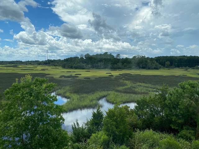 591 Mclernon Trace, Johns Island, SC 29455 (#20020199) :: Realty ONE Group Coastal