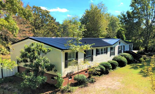 210 Powell Drive, Summerville, SC 29483 (#20021459) :: Realty ONE Group Coastal