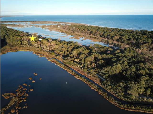 168 Lake Timicau Lane Lot 87, Dewees Island, SC 29451 (#20029583) :: Flanagan Home Team