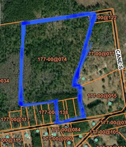 0 Saturn Lane, Walterboro, SC 29488 (#20031320) :: The Cassina Group