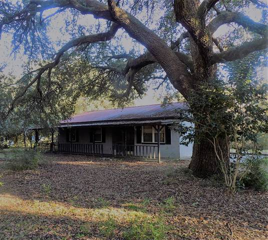 6031 Hyde Park Road, Ravenel, SC 29470 (#20031705) :: CHSagent, a Realty ONE team