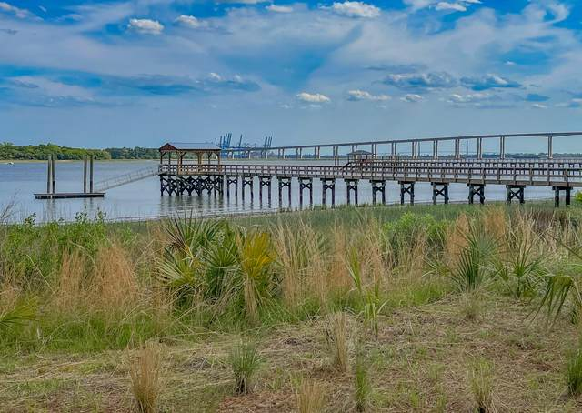 229 Captain Goddard Road, Charleston, SC 29492 (#21011287) :: Realty ONE Group Coastal