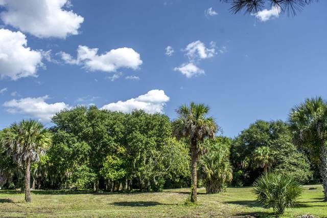 3311 Palmetto Blvd, Edisto Beach, SC 29438 (#14027402) :: The Cassina Group