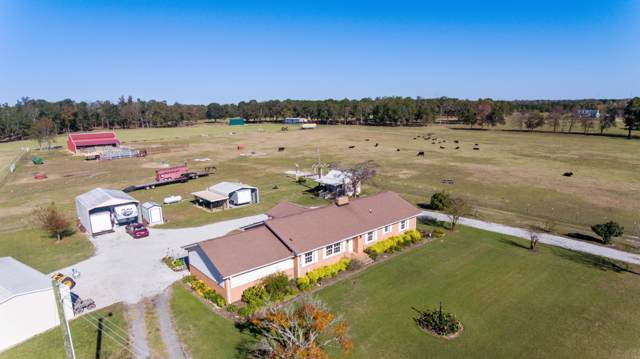 922 Binnicker Bridge Road, Cope, SC 29038 (#19025242) :: The Cassina Group