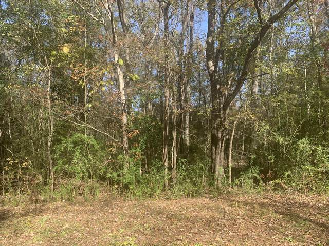 Lot 21 Mary Ellie Drive, Summerville, SC 29483 (#20032668) :: Realty ONE Group Coastal