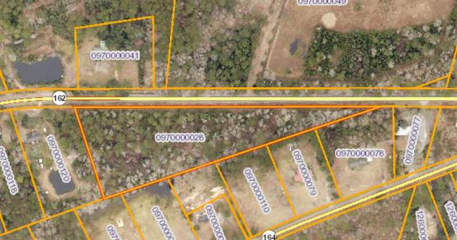 7695 Highway 162 Lot 2, Hollywood, SC 29449 (#21007986) :: The Cassina Group
