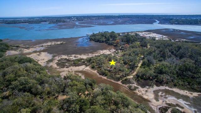 7045 Whistling Alligator Way, Wadmalaw Island, SC 29487 (#19018914) :: Realty ONE Group Coastal