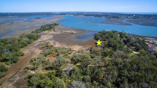 7083 Whistling Alligator Way, Wadmalaw Island, SC 29487 (#19018915) :: Realty ONE Group Coastal